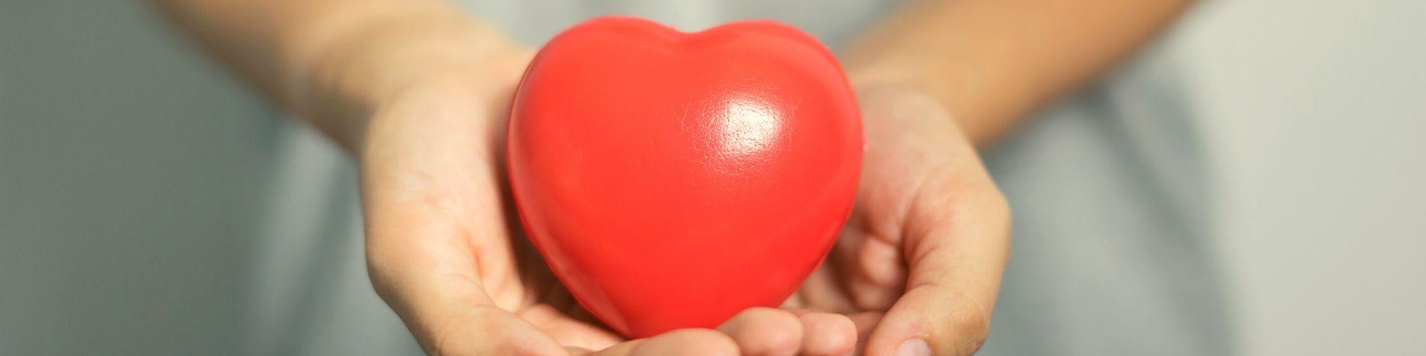 Corazón de goma en manos para ilustrar la calculadora de seguro de vida